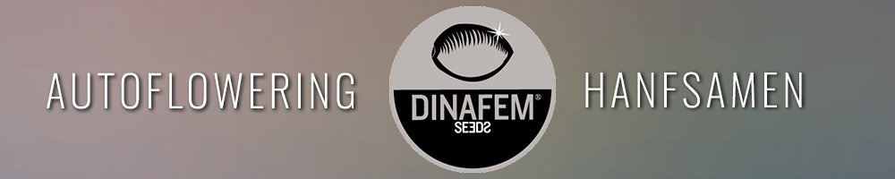 Dinafem Seeds